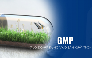 7 lý do phải áp dụng GMP trong sản xuất thực phẩm chức năng