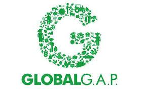 GIỚI THIỆU TIÊU CHUẨN GLOBAL G.A.P